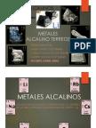 Alcalinos y Alcalino Terreos