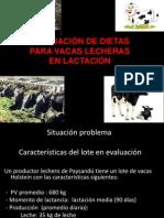 2012. Introduccion Balance Vaca Lechera