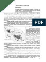 Organizarea si amenajarea localitatilor.doc