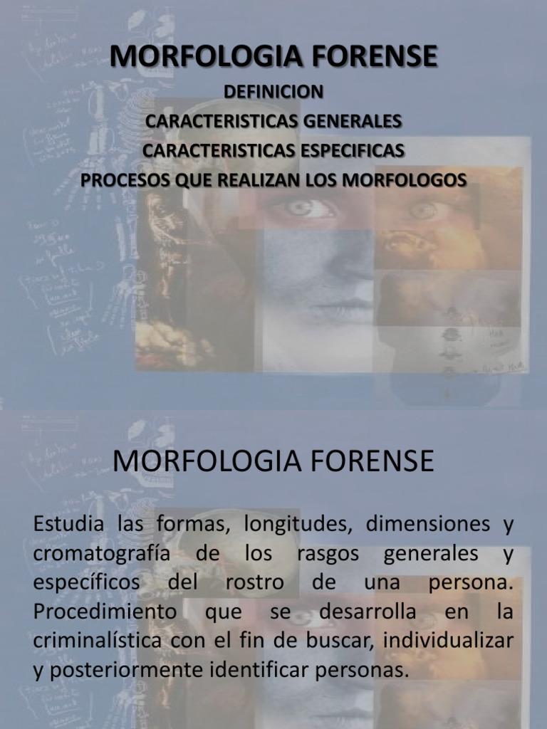 Morfologia Forense 1