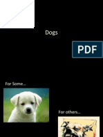 fun facts about dogs.pptx