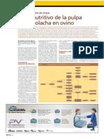 Composicion Quimica Pulpa de Remolacha