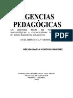 Guia y Modulo de Agencias Pedagogicas