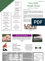 DSG Newsletter  Nov 3rd 2013 .pdf