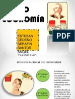 Microeconomia - Eleccion Del Consumidor, Demandas