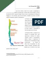 Trabajo Final (La Trienal de Chile)