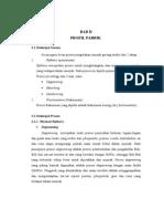 BAB II-6 Profil Pabrik.doc