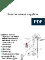 sistemului nervos vegetativ.ppt