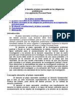 vulneracion-del-derecho-al-plazo-razonable-diligencias-preliminares.doc