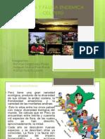 FLORA Y FAUNA ENDEMICA  29-10.ppt