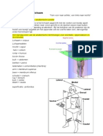 Orgaansystemen.pdf