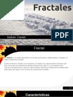 FRACTALES - ORGANIZACION FRACTALES