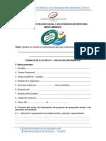 Formatos de Las Etapas Del Proyecto de Proyec Social o Exten Uni