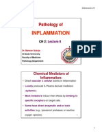 CH_2_-_Inflammation_II_Compatibility_Mode.pdf