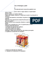 Structura pielii.doc