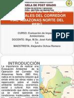 EVALUACIÓN DE IMPACTOS AMBIENTALES DEL CORREDOR VIAL AMAZONAS NORTE DEL PERU