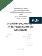 La Cadena de Suministros en El Procesamiento y Uso Del Gas Natural