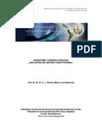 Garantismo y Derecho Procesal (LORCA NAVARRETE)