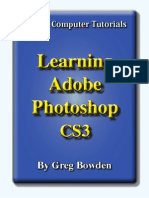 Learning Adobe Photoshop CS3