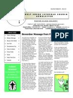 newsletter -nov 2013