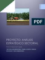 Proyecto Proceso Estrategico i Hugo