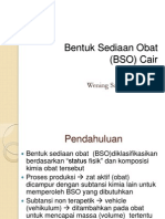 BSO CAIR 2012.ppt