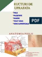 STRUCTURI DE SUPRAFATA.ppt