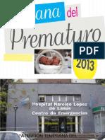 2013-Servicio ATDI 506-Hospital Narciso López