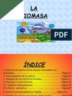 biomasa-110516060021-phpapp01