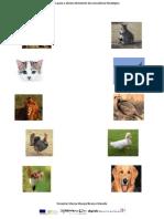 exercciosdeconscinciafonolgica1-110311175141-phpapp01 (3)