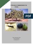 Η Καλλιέργεια και Γονιμ οποίηση της Συκιάς.pdf