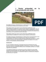 Alimentacion. Factor Primordial en La Diferenciacion de Productos Del Cerdo