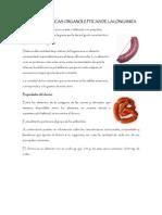 Caracteristicas Organolepticas de La Longaniza