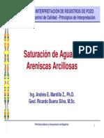 Cap09 Sw en Arenas Arcillosas