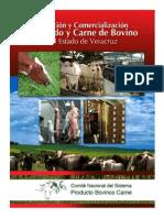 Produccion y Comercializacion Bovinos