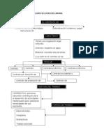 MAPAS_conceptuales_de_legislacion Laboral de La 1 a La 4