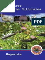 8.-Nuestros Tesoros Culturales - Nagarote }