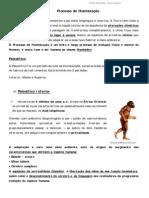 resumo historia_Processo de Hominização_7ano