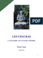 Coquet Michel - Les Chacras L'Anatomie Occulte de l'Homme