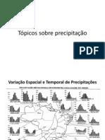 Tópicos sobre precipitação