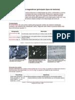 Texturas das rochas magmáticas.pdf
