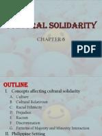 Cultural Solidarity - Peace Report