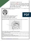 Lista de Exerccio 2013 - Embriologia