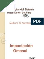 Patologias_digestivas_bovinos