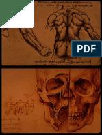 Leonardo Da Vinci Schite