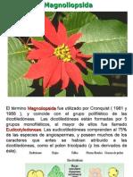 Angiospermas 5.pdf