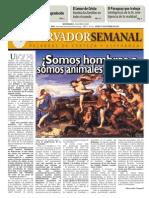 Observador Semanal del 31/10/2013