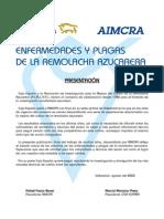 Enfermedades y Plagas de La Remolacha