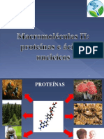 Proteínas_Ac nucleicos