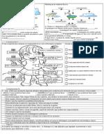 provadiagnstica7anociencias-121212195144-phpapp02